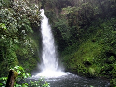 Waterfall on a nature walk near Ambua lodge
