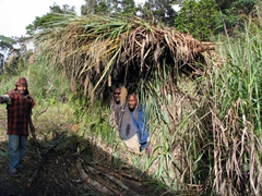 Locals surprised us when they popped out from their camouflaged hut; Tari