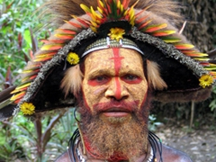 These Huli Wigmen differ from those at the Goroka Show because they use natural yellow pigments on their face (the Goroka Show Wigmen use bright yellow commercial dyes)