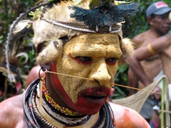 "Each Huli wigmen adds his own particular ""flair"" to distinguish himself from the others"