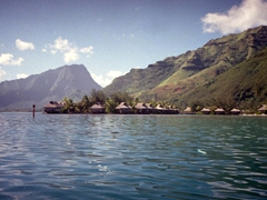 Another view of Moorea from our dive boat