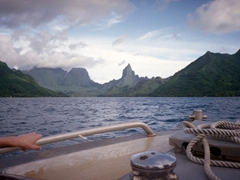 View of Moorea from our dive boat