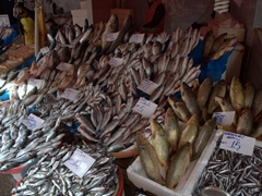 Fish market; Eminönü
