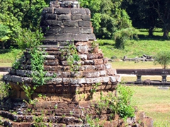Vegetation finds a way to grow in and amongst all the ruins of Angkor Wat