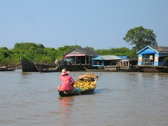 View of a woman paddling bananas over to Tonle Sap floating village. The Tonle Sap is the largest freshwater lake in SE Asia
