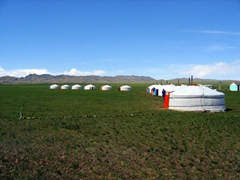 After a long and arduous journey, this is a sight for sore eyes. Our home for the next few nights, the Gobi Yurt Camp