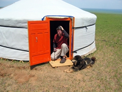 Robby becomes acquainted with the camp dog at the Gobi Yurt Camp