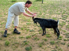 Robby and his goat friend shove each other around; near Erdene Khombo monastery
