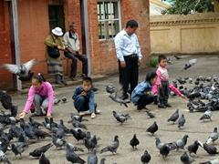 Children feeding pigeons; Gandan Monastery complex