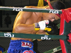 Profile of a Thai kickboxer