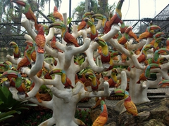 Toucan tree; Clay Pot Garden Display at Nong Nooch