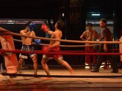Muay Thai demonstration; Nong Nooch Garden