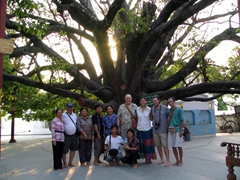 Standing beneath an ancient tree; locals believe this tree originated from Buddha himself; Mandalay