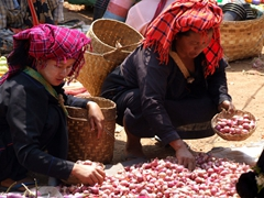 Pa-O women buying onions at the Heho market