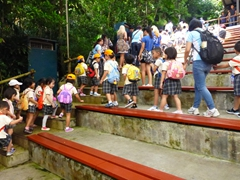School kids (in their smart uniforms) head off to explore the rest of the zoo after the sea lion performance ends