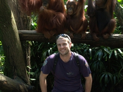 Robby poses in front of a few members of the world's largest captive colony of orangutans; Singapore Zoo