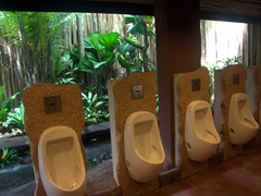 Urinal with a view; Jurong Bird Park