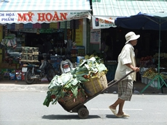 Transporting fruit from the market; Can Tho