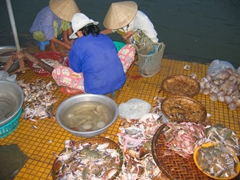 Fresh seafood on display at the fish market in Hoi An