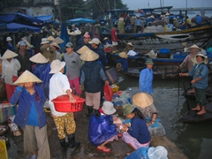 The daily 6:00 a.m. fish market, Hoi An