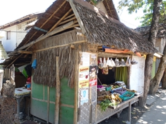 Simple shack selling spices and stuff on the way to Bulabog Beach