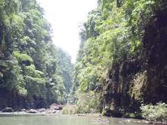 Gorgeous vistas on our boat ride to Pagsanjan Falls