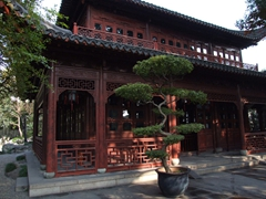 A bonsai tree marks the entranceway to one of Yu Gardens Bazaar's many buildings