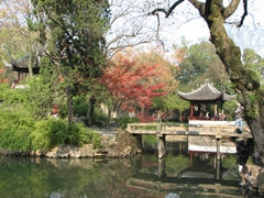 Even though this is a picture in tranquility, there are thousands of Asian tourists scrambling all over the Humble Administrator's Garden; Suzhou