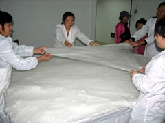It takes a half dozen workers to stretch the silk fabric into thin layers for the factory's most famous export: silk duvets