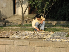 This Suzhou resident was drying hundreds of tiny fish by the riverbank