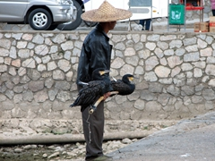 """""""Take my photo""""...an entrepreneurial capitalist attempts to lure tourists into taking a cormorant shot (for a fee of course)"""