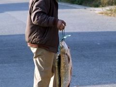 A Yangshuo resident carries home several large, fresh fish