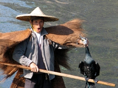 A fisherman dons a traditional straw outfit and poses with his cormorant; Lijiang River