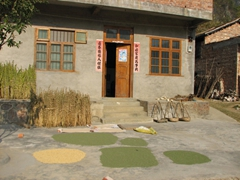 Grains are carefully laid out to sun dry; Yangshuo countryside