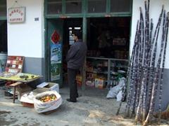 Fresh sugar cane for sale near Li River