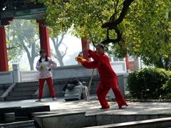 Early morning martial arts; Banyan Lake Park