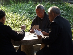 Retirees take advantage of free entry to all Chinese parks to enjoy a card game at Seven Star Park