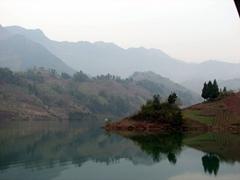 Shennong stream view