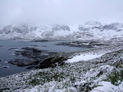 Another view of Cooper Bay, a rat-free island and home to snow petrels, antarctic prions, black-browed albatrosses, chinstrap penguins and 20,000 macaroni penguins