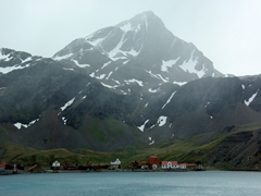 First view of Grytviken whaling station