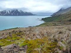 Gorgeous views abound on our hike out of Fortuna Bay