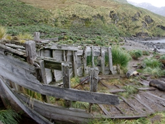 Decaying remains of an old whaling boat at Godthul Bay. (Godthul Bay was an old whaler's station and the remnants of thousands of whale bones can still be seen today)