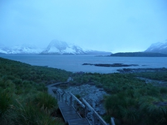 This boardwalk is the only way to access Prion Island to get close to the wandering albatross