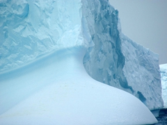 The captivating curves of an iceberg caught our attention; Iceberg Bay