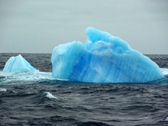 A blue iceberg floating in the Scotia Sea. We learned that blue icebergs are old icebergs, having trapped and compressed gas within the ice to such an extent that the blue color is a result of light scattering, much like a blue sky