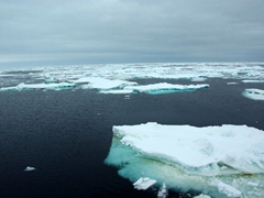 Drift ice in the Scotia Sea