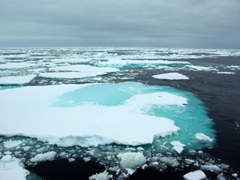 Another view of the vast drift ice; Scotia Sea