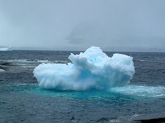 Iceberg Bay lives up to its name; Coronation Island at South Orkney Islands