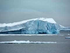 There are plenty of massive icebergs surrounding Paulet Island