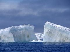 Massive icebergs just off Paulet Island